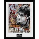CADRE HARRY POTTER FRAMED PRINT 30X40