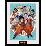 CADRE DRAGON BALL SUPER UNIVERSE 30X40