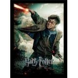CADRE HARRY POTTER DEATHLY HALLOWSPART 2 30X40