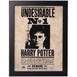 CADRE HARRY POTTER UNDESIRABLE N1 30X40